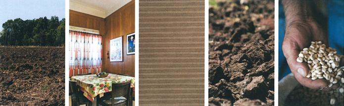 דוגמאות לעיצוב סביבת עבודה בגווני אדמה