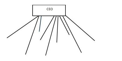 Organizational Structure 2