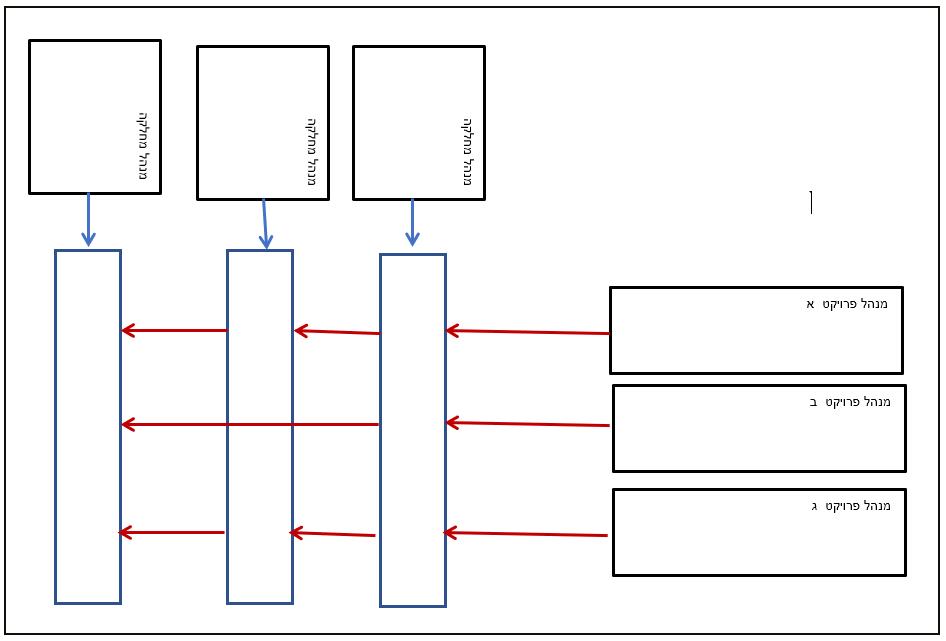 איור 1 מבנה ארגוני מטריציוני